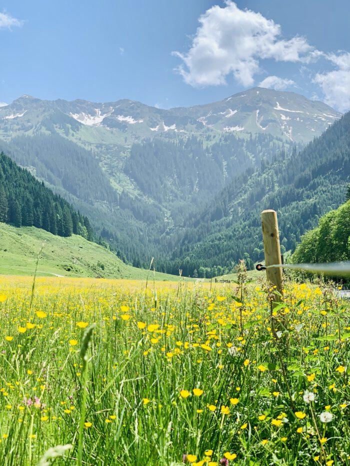 Kelchsau in der Ferienregion Hohe Salve in den Kitzbüheler Alpen